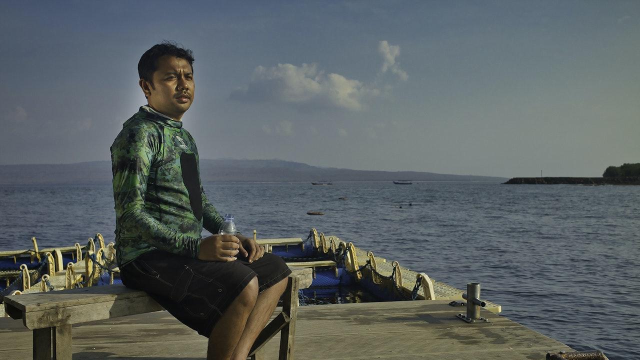 Panadol GSK Indonesia -