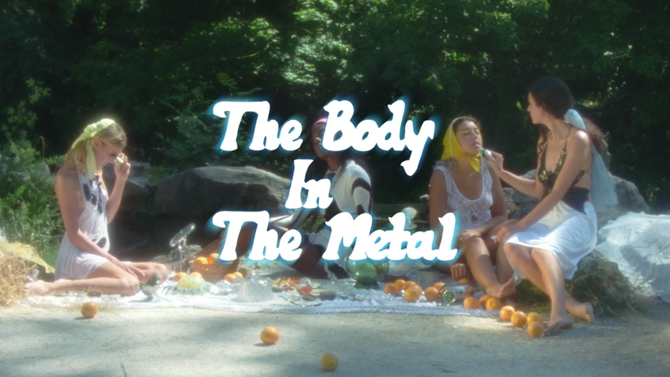 THE BODY IN THE METAL