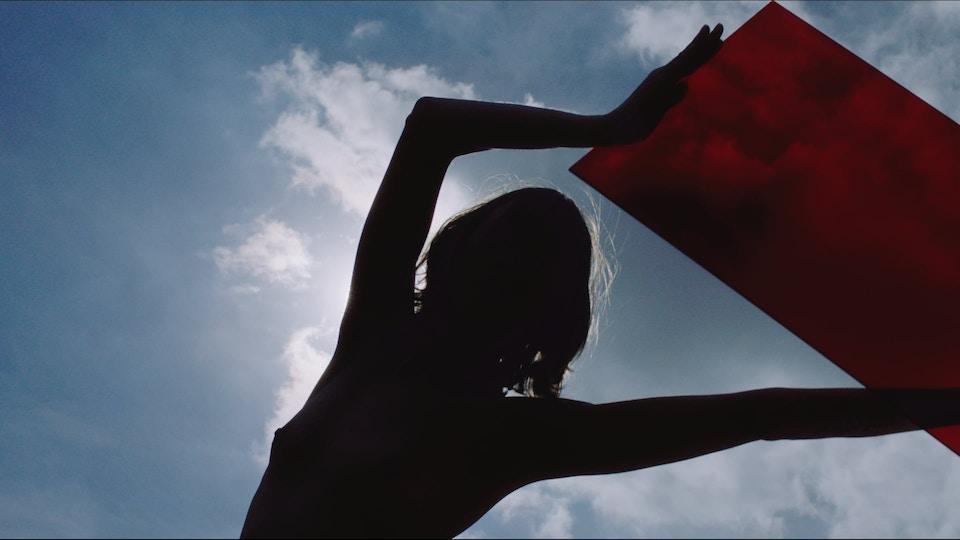 Stella McCartney - Sustainability (Dir Viviane Sassen)