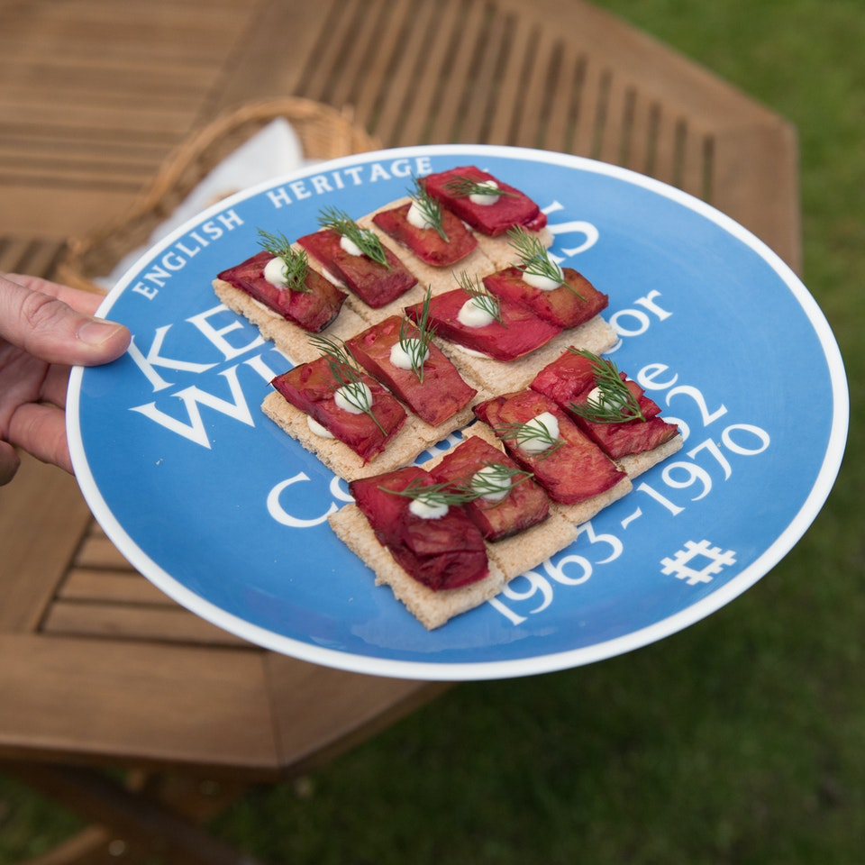 Blue Plaque plates launch, Freud Museum NEWNEW_redherrings