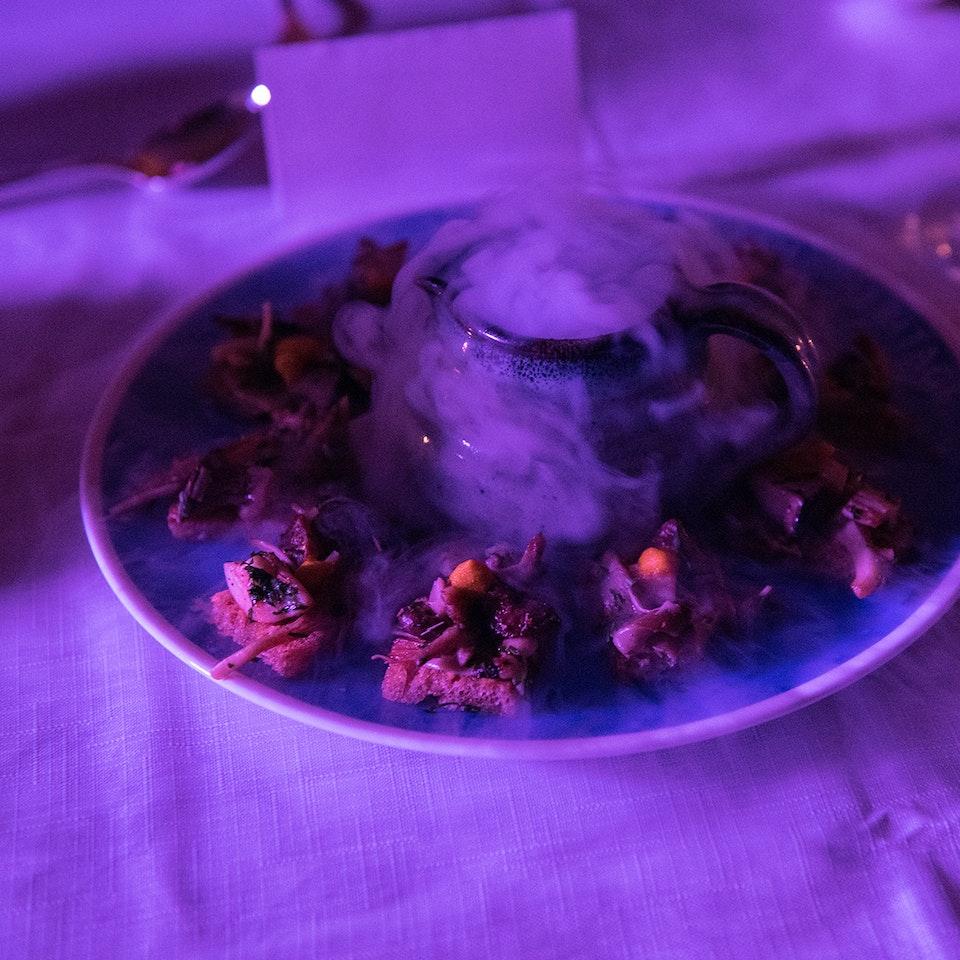Blue Plaque plates launch, Freud Museum jimi course lo res
