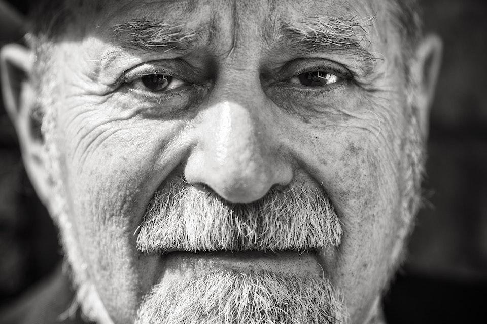 Portraits - Howard Brandston