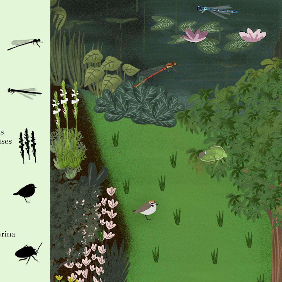 Kaleidoscope Gardens-Extinction-100 years