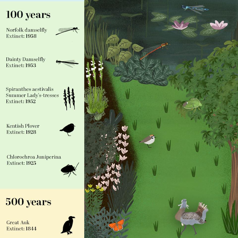 Kaleidoscope Gardens-Extinction