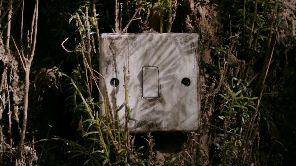 Switch (2020)