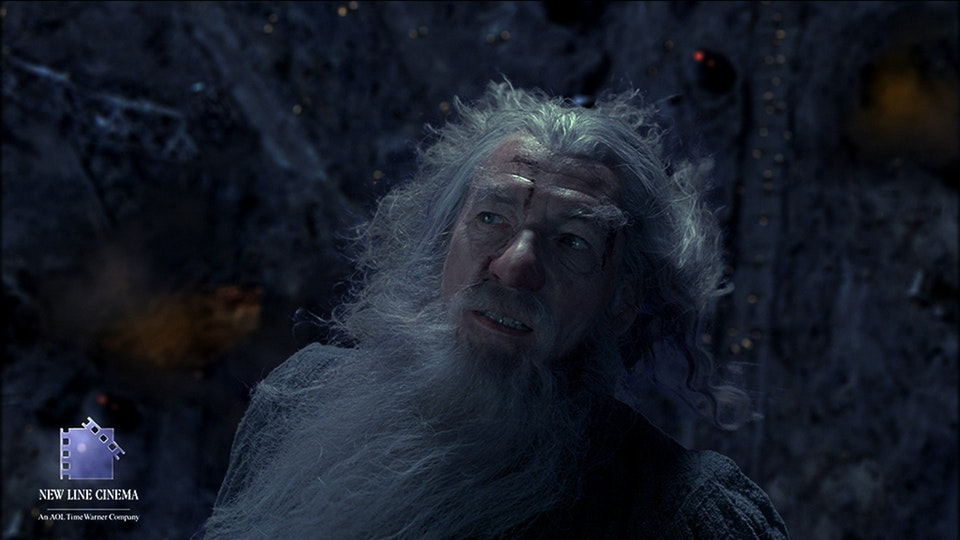 The Lord of the Rings : Fellowship of the Ring