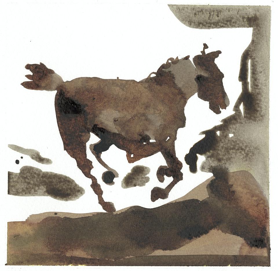 wild pastures - wild pastures #12