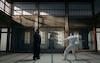 Wargaming Steven Seagal WoWS Viral Video