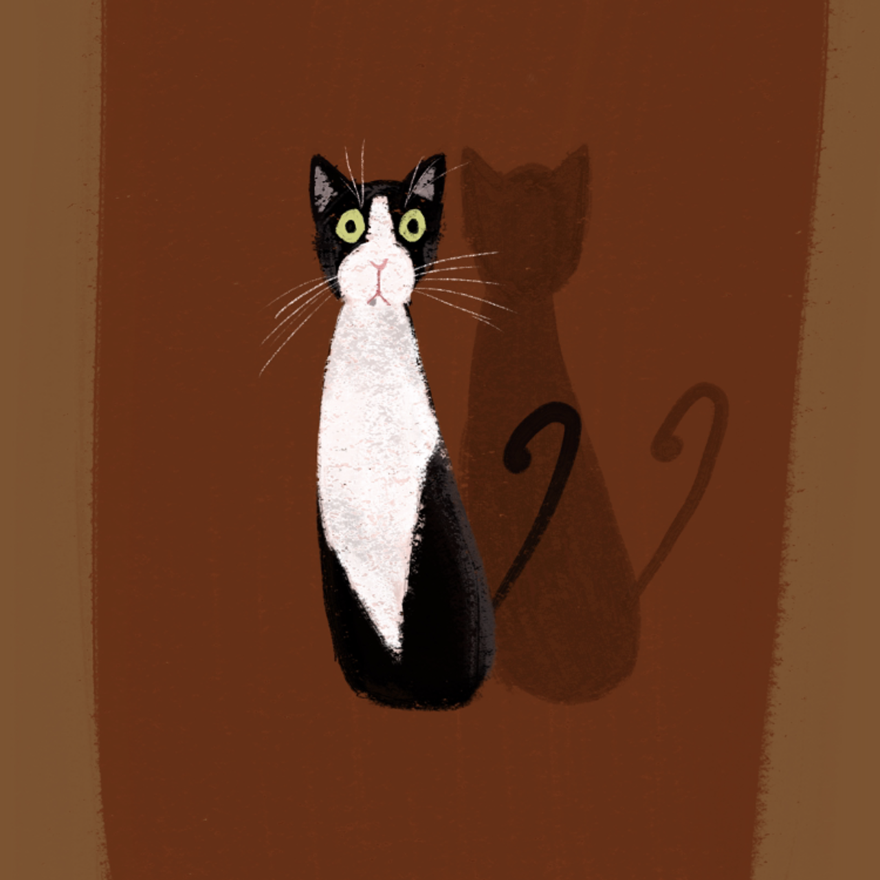 Timba the cat