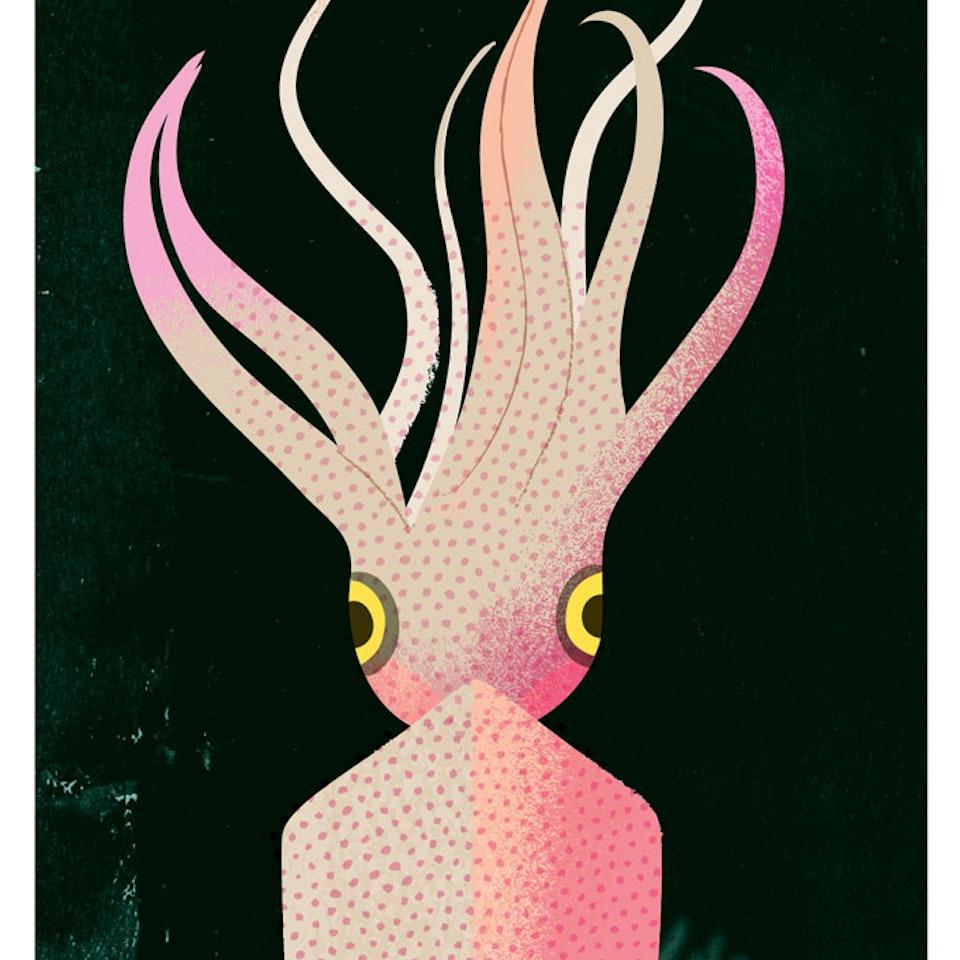 Fish calamari