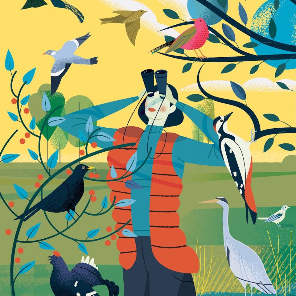 Fauna birdwatching