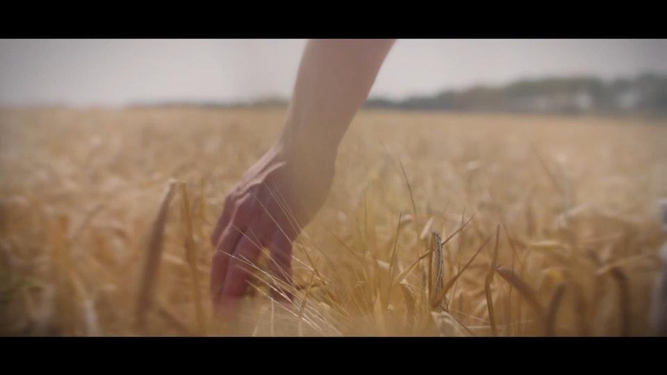 Provincie Limburg - Kwaliteit van leven