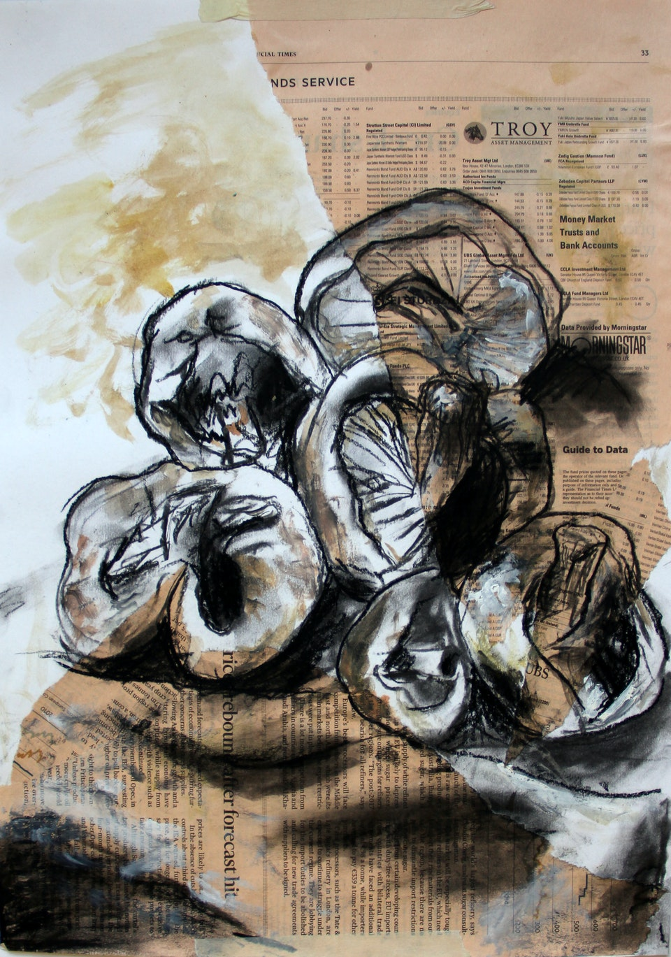 Nature - Rapid Mushrooms - 2014 - Charcoal Chalk and ink on Newspaper and Paper - 30 x 42 cm A3