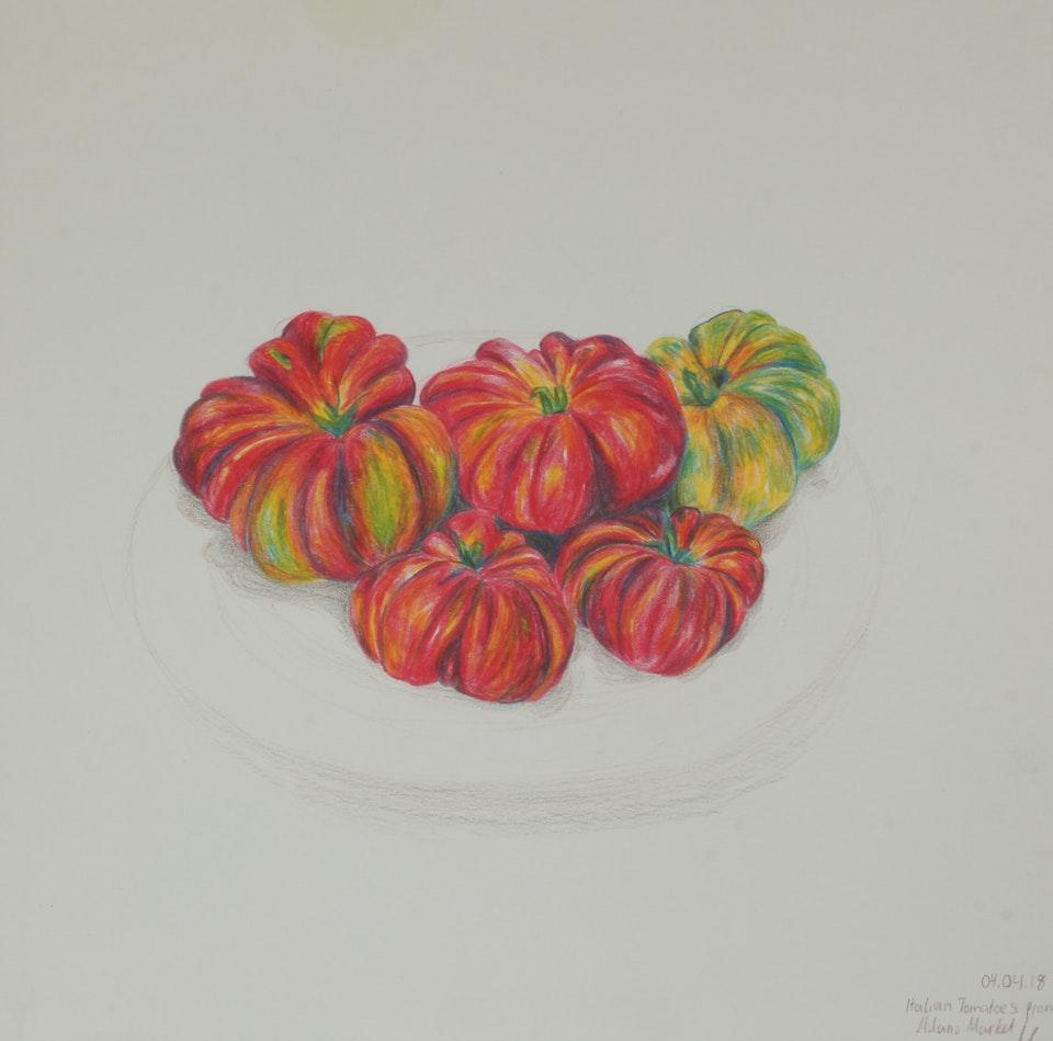 Nature - Tomato Vines - 2018 - Pencil on Paper - 30 x 30 cm