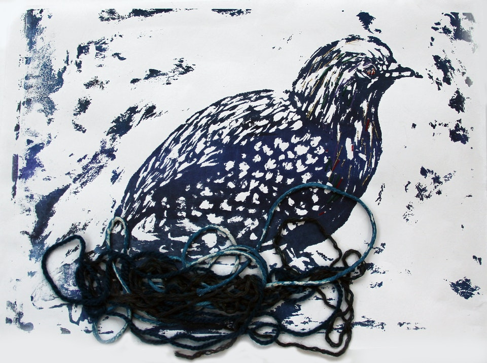 Nature - Pigeon in Nest - 2015 - Screen Print on Paper - 21 x 29 cm A4