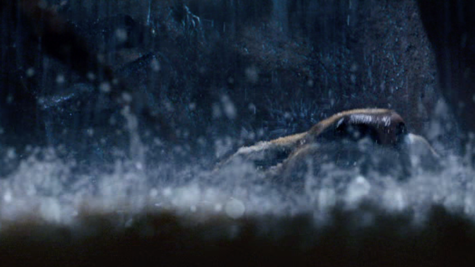 10,000 BC - Compositing
