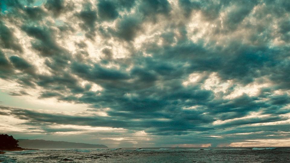 ConjureGirlBlue Productions - flora earth sea sky