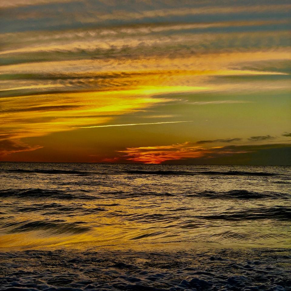 flora earth sea sky IMG_3421