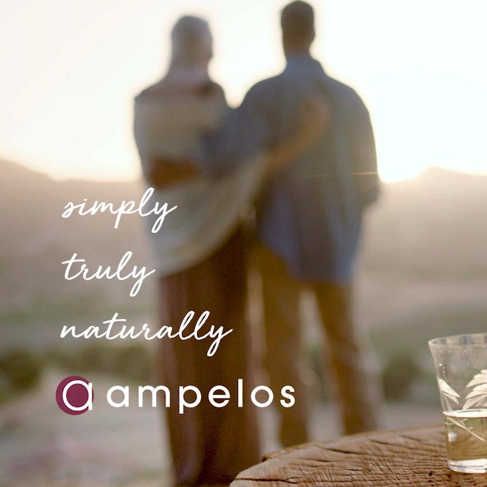 Ampelos Cellars - AC1