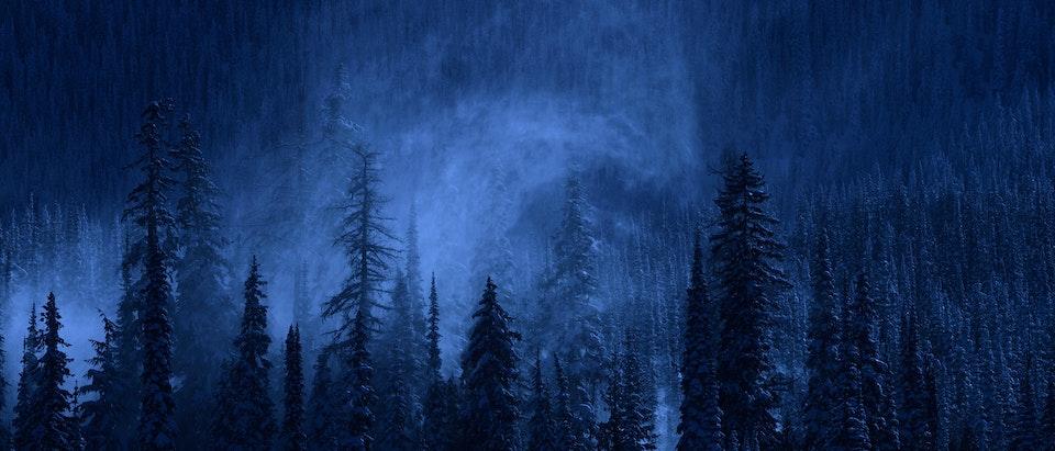 Night on Earth: Frozen Nights