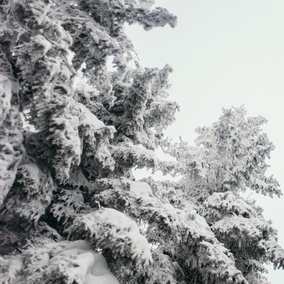 Łukasz Supergan / Winter Crossing of Polish mountains'21 - _M7A0142-min