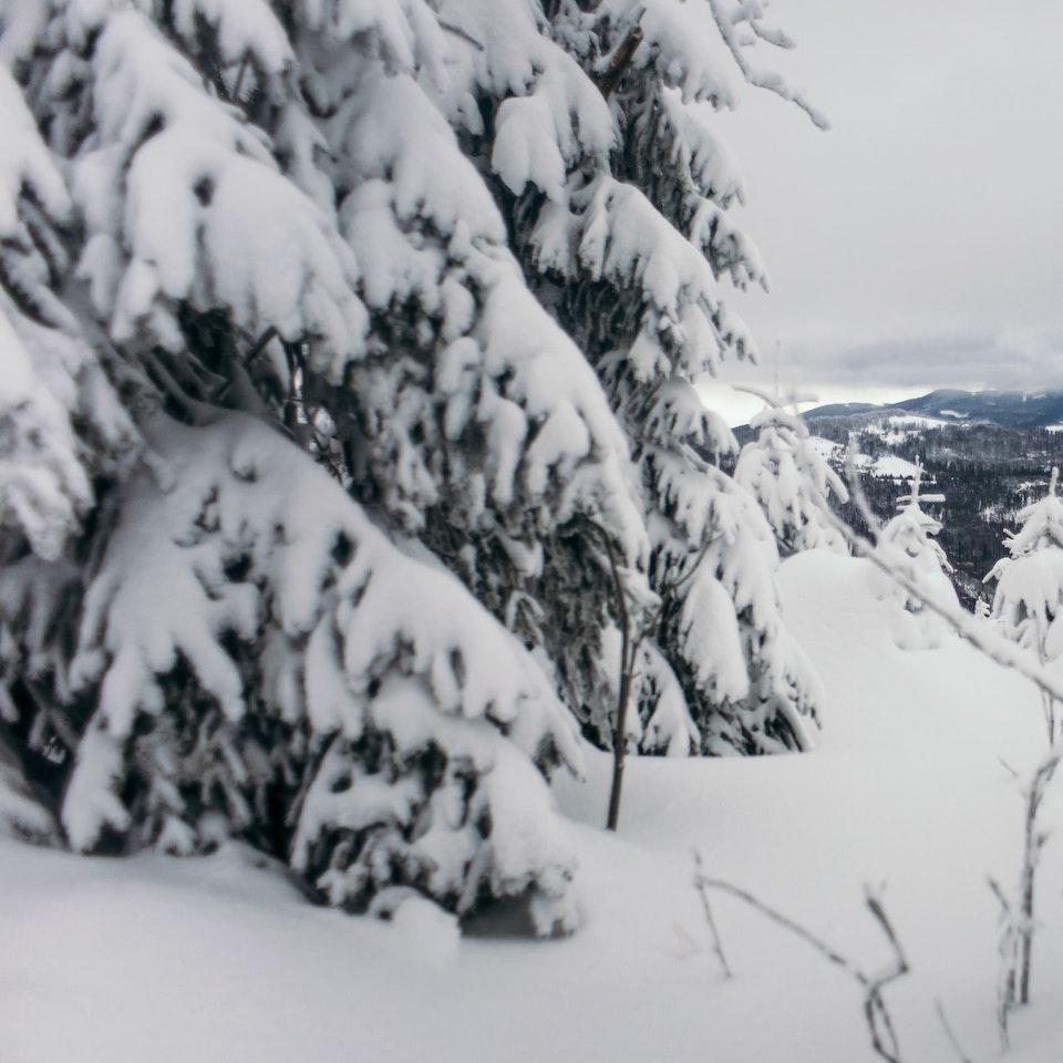 Łukasz Supergan / Winter Crossing of Polish mountains'21 - _M7A0182-min