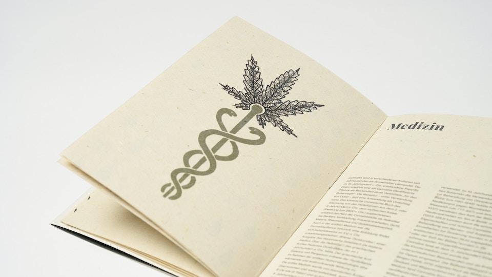 Cannabis Marijuana Hanf