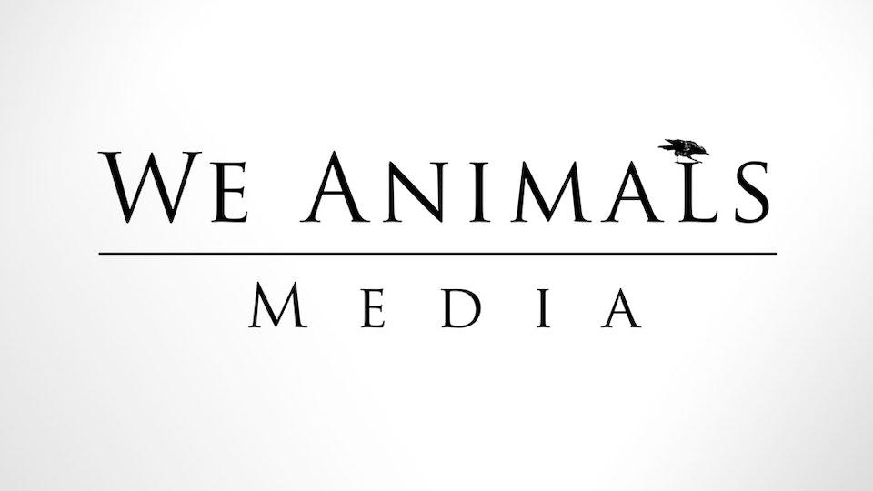 We Animals Media