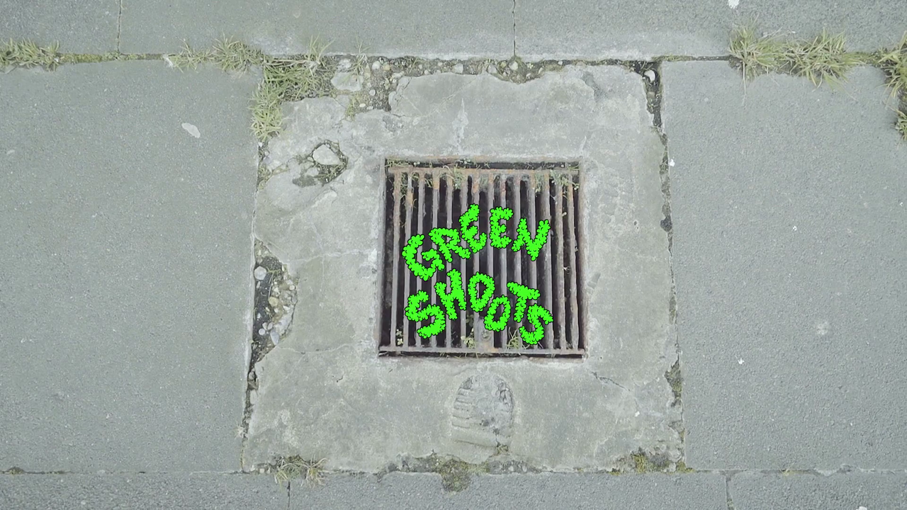 Green Shoots: transformation Serpentine gallery Commission Dir. Saelia Aparicio -