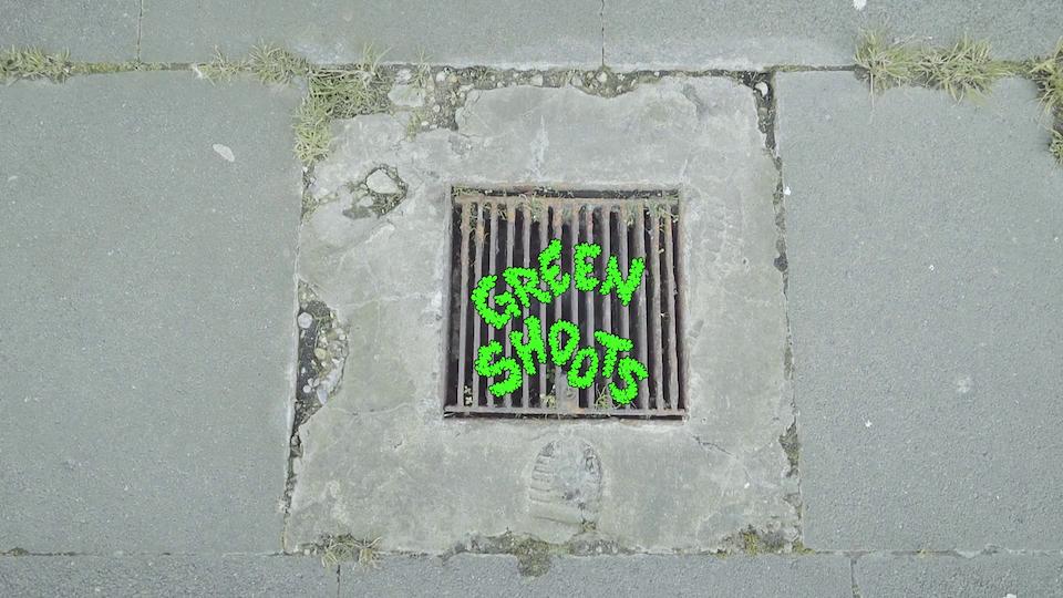 Green Shoots: transformation Serpentine gallery Commission Dir. Saelia Aparicio