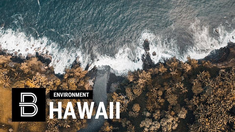 OCEAN CONSERVATION: Hilo, Hawaii