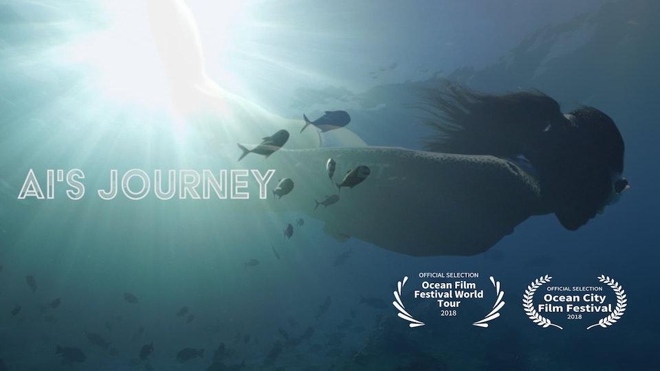 Ai's Journey