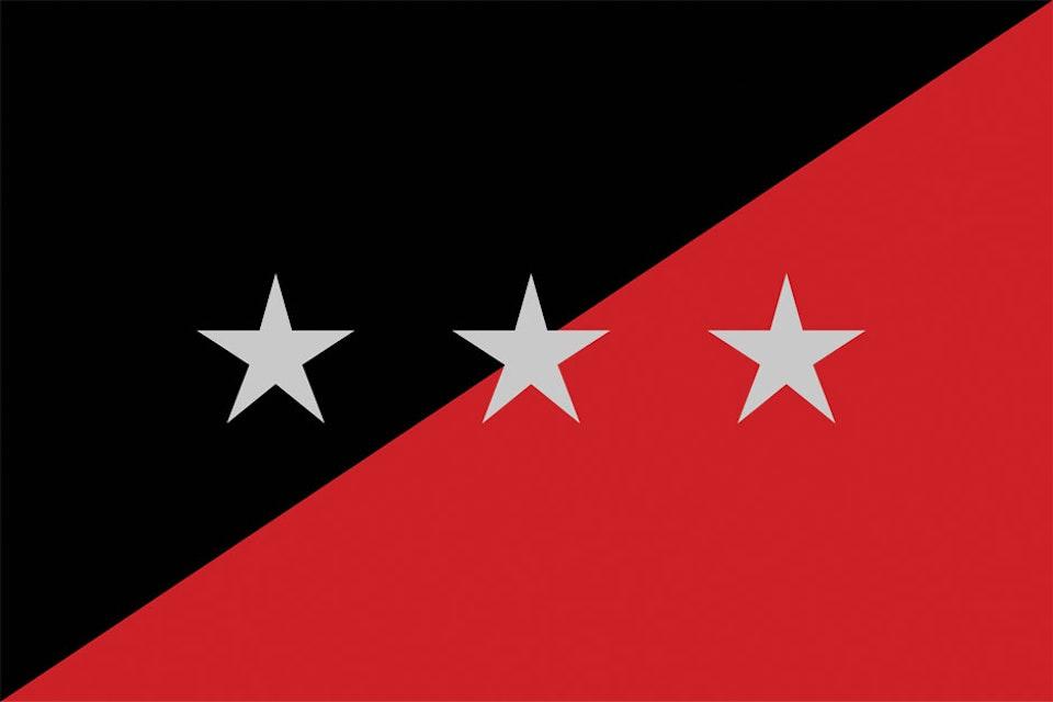The Last Internationale - Flag