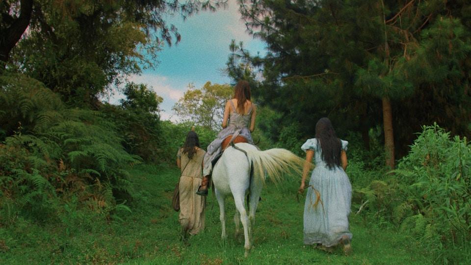 FEATURE FILM, Luz, Juan Diego Escobar (Colombia)