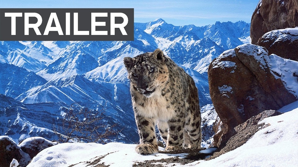 Planet Earth II - BBC