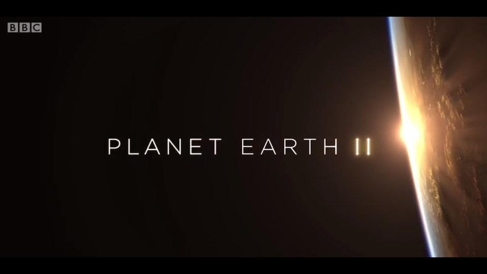 Planet Earth II - BBC