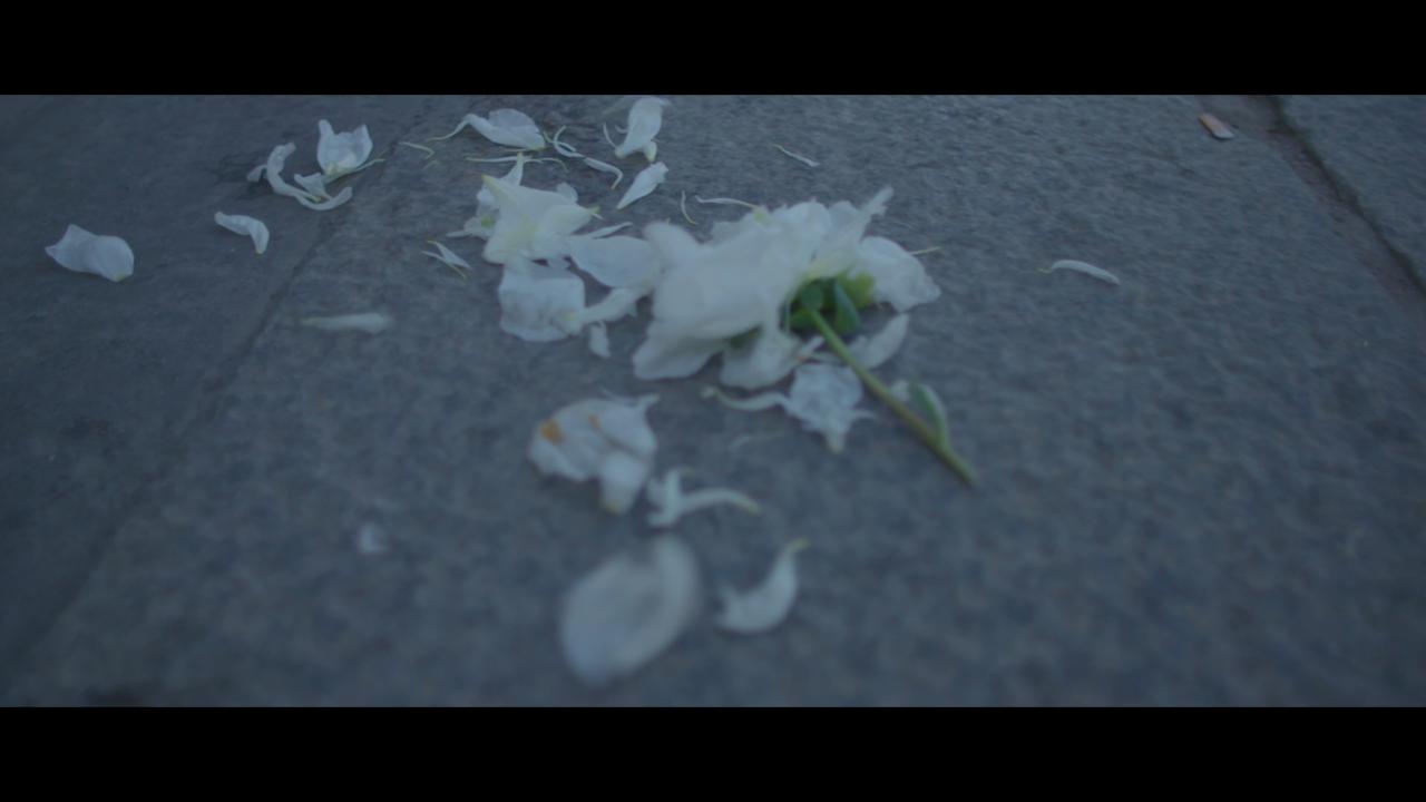 Screen Shot 2021-01-05 at 17.02.48