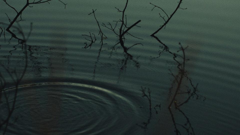 YellowStraps | Mirror Lake YELLOWSTRAPS — MIRROR LAKE9