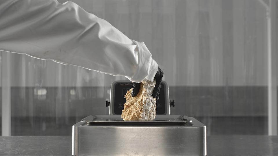 adidas   Stan Smith Mylo adidas mycelium stills_1.8.1