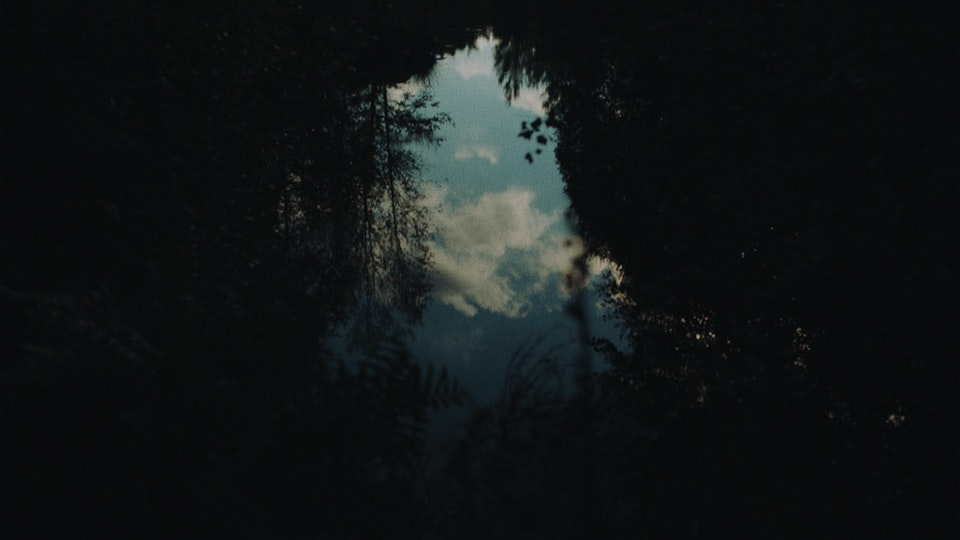 YellowStraps | Mirror Lake YELLOWSTRAPS — MIRROR LAKE1