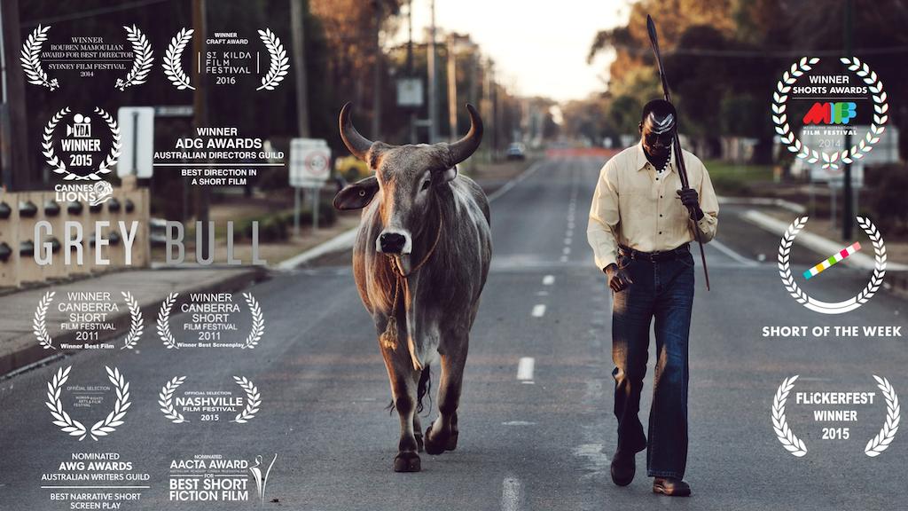 Grey Bull Short Film