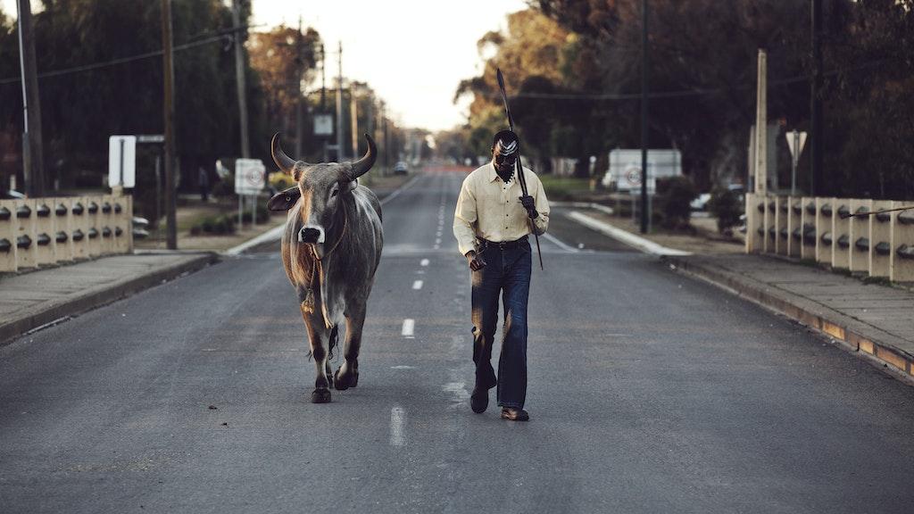 Grey Bull - Short Film Trailer