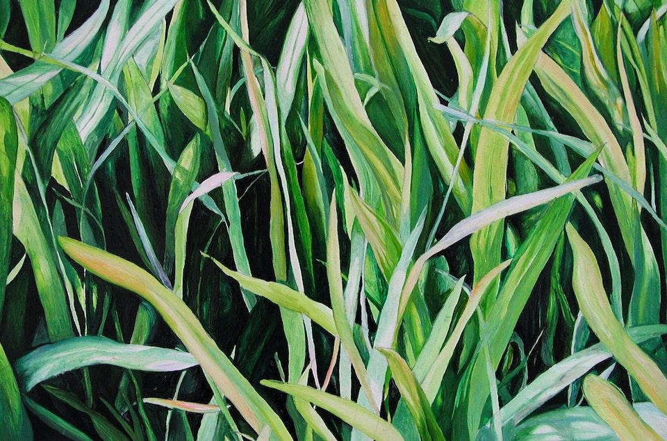 grasscroppedWEB1800