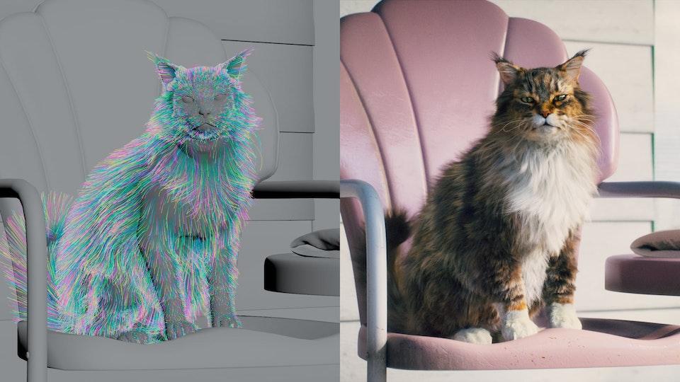 Cat's Pride - Cat's Pride - Behind the Scenes