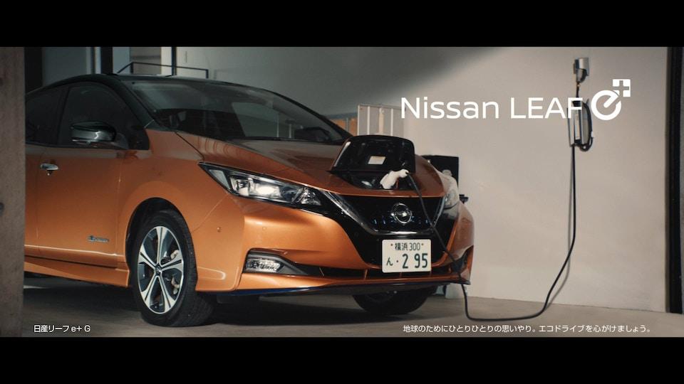 NISSAN Leaf 'connect'