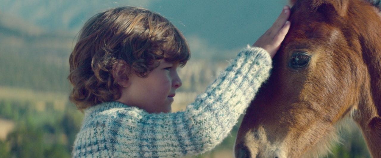 FOLKSAM 'Horse' -
