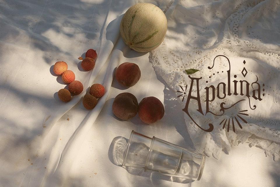 Apolina Lookbooks