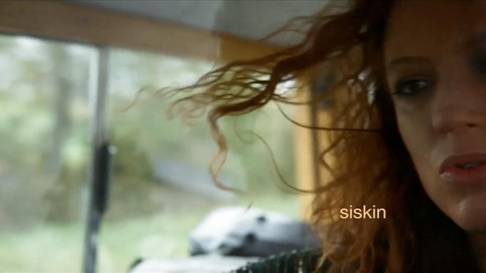 music video reel - Siskin