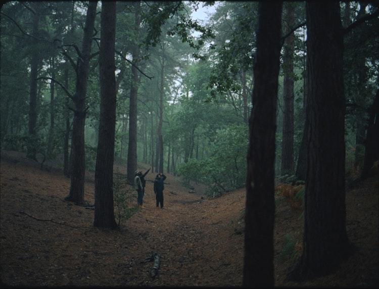 Timberland 'Nature Needs Heroes'