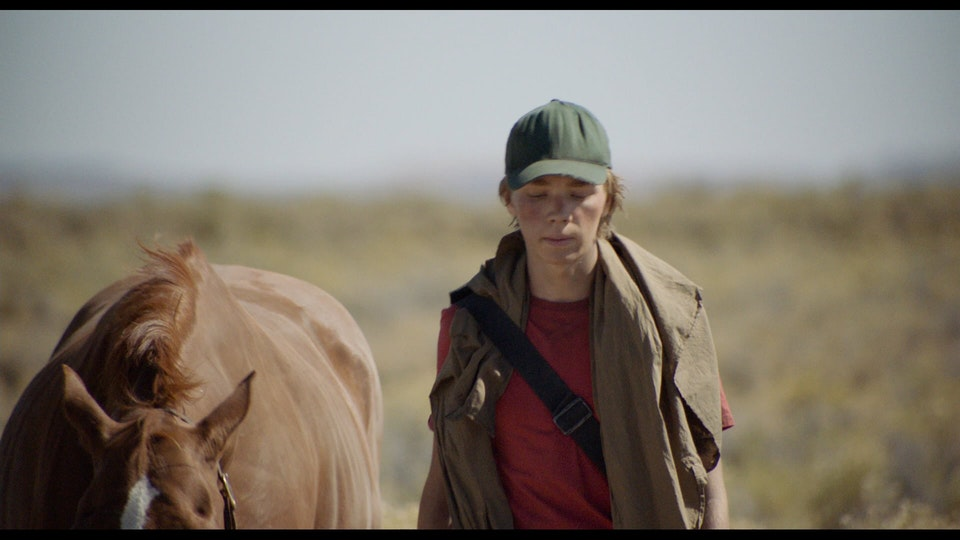 Lean On Pete / Andrew Haigh